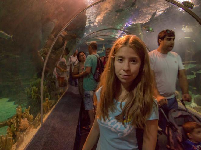 цилиндрический тунельный аквариум