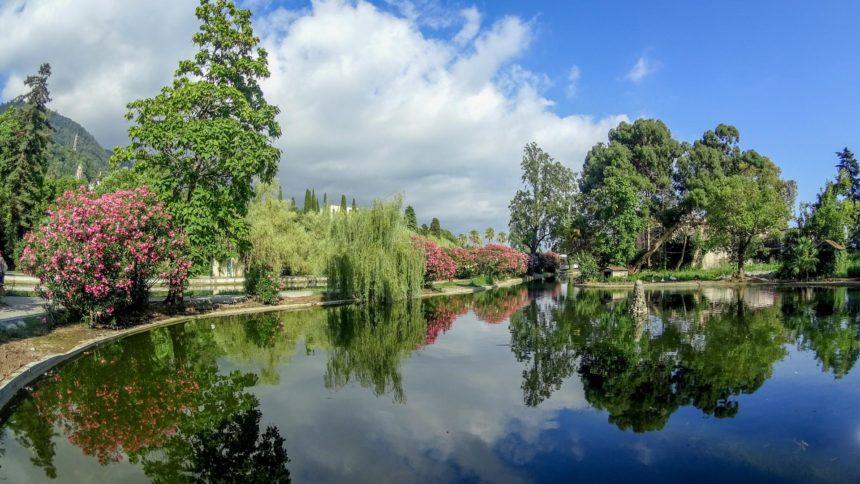 парк в Новом Афоне
