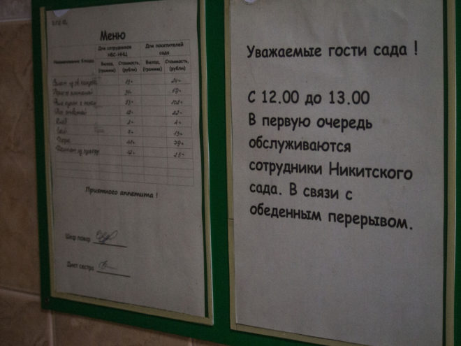 цены в столовой в никтиском ботаническом саду
