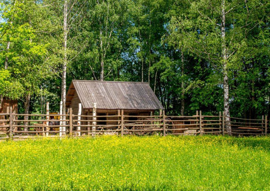 Хозяйственный двор в Витославлицах