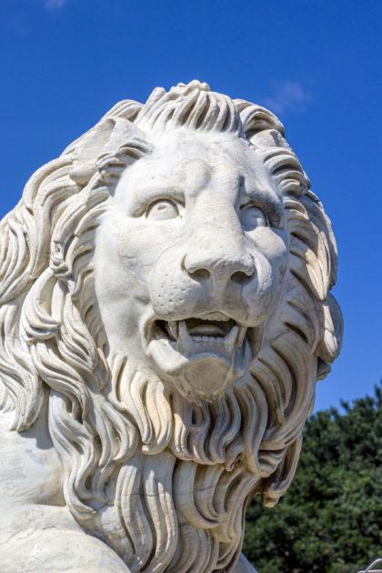 воронцовские львы